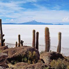The Stunning Salar de Uyuni in Bolivia World Geography Games, Peru, Plan Hotel, Lac Titicaca, San Pedro, Dinosaur Tracks, Bolivia Travel, Beyond The Horizon, San Jacinto