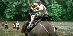 Indonesia   Sumatra - Eco Travel