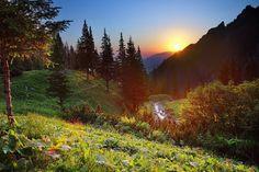 nature's splendour
