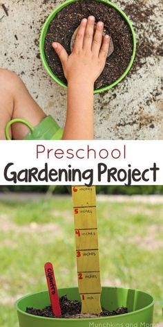 Preschool Gardening Project- a great way to learn with kids! #groablesproject #ad