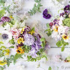 DL-FLower images   竹内陽子 YokoTakeuchi   フラワーアーティスト/Flower Artist/写真家/フォトグラファー