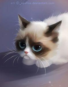 "белая кошка на белом - ""Google"" paieška"