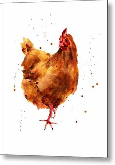 Cheeky Chicken Metal Print by Alison Fennell. All metal prints are professionally printed, packaged, and shipped within 3 - 4 business days and delivered ready-to-hang on your wall. Choose from multiple sizes and mounting options.