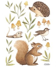 These are gorgeous - Little Forest Animals Wall Stickers Forest Wallpaper Iphone, Animal Wallpaper, Forest Illustration, Watercolor Illustration, Squirrel Illustration, Illustration Kids, Forest Animals, Woodland Animals, Johanna Basford Enchanted Forest