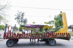 Fiesta Nacional de la Flor :: Escobar Buenos Aires Argentina 2014