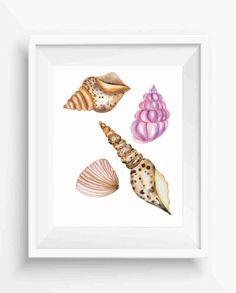 Sea Shells,Shells prints,watercolor sea shells,digital prints,instant download,beach home decor,Beach Wall Art,Ocean Wall Art,