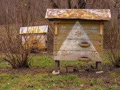 This is the old Urbonavicius farm in Anyksciai, Lithuania.  The hives were not working at this time , but had been on our previous visit. ...