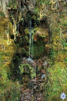 Nacimiento de agua en el Nevado del Ruiz.