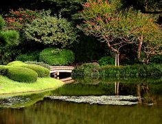 A garden the likes of Alice in Wonderland in Tokyo, Japan.