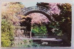 San Francisco California CA Japanese Tea Garden Postcard Old Vintage Card View