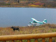 Lakefront Alaska Wilderness Property For SaleNear Denali National ParkLodge and Guest Cabins EagleStar.Net - Land For Sale - Rural R...