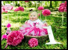 First birthday tissue pompom photoshoot