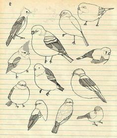 i wanna draw everyone of these, marybeth and i draw the same looking bird with different mods constantly... this will be nice to change things up a tad :)