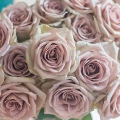 Diy Bouquet, Rose Bouquet, Bouquets, Amnesia Rose, Diy Wedding Flowers, Garden Roses Wedding, Wedding Ideas, Wedding Stuff, Wedding Venues