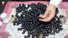 Pickled Olives, Blackberry, Pickles, Salsa, Homemade, Fruit, Food, Youtube, Olives
