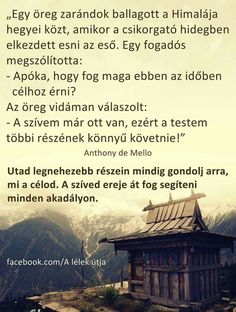 A szíved ereje átsegít minden akadályon ♡ Mind Gym, Motivational Quotes, Inspirational Quotes, Thoughts And Feelings, Staying Positive, Better Life, Good Vibes, Buddhism, Picture Quotes