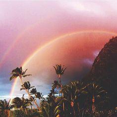 Hawaiian Rainbow in Paradise