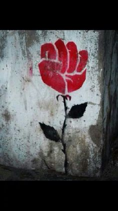 the rose that grew from concrete. .. reclaim your mind.