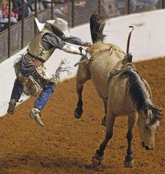 https://flic.kr/p/bqLpYP   Stock Show Rodeo 0127 12   Chris Harris bails out…