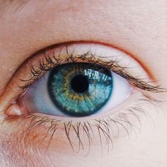 "The recently discovered ""gut-retina axis"" describes a delicate inter-relationship between gut flora, immune cells that signal the retina, and the eye microbiome. eyes color Eye Health and Gut Health Linked Beautiful Eyes Color, Pretty Eyes, Cool Eyes, Beautiful Things, Eye Study, Aesthetic Eyes, Nature Aesthetic, Eye Close Up, Eye Pictures"