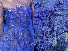 Liliya Hudyakova e il connubio fra moda e natura - Mode Space Fashion, Fashion Art, Fashion Design, Elegant Dresses, Beautiful Dresses, Pretty Dresses, Christian Dior, Alexander Mcqueen, Elie Saab Couture