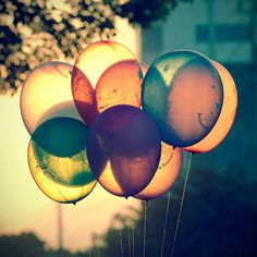 Gorgeous photograph of coloured balloons on what looks like a late Summer's evening. / bokeh