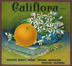 Califlora Orange - Vintage Label