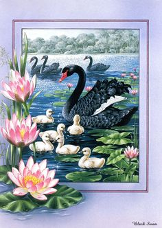 beautiful-birds-paintings- (5)