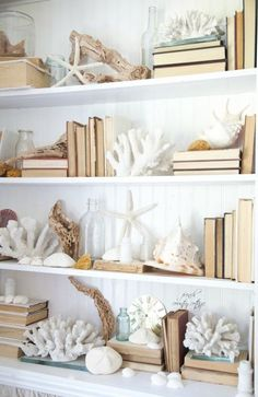 Tips for how to style a shelf! A few coastal colors and white on white make an elegant statement!