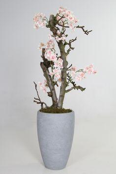 Inspiratie foto's : Roze bloesem boompje H 1m