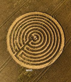 Crop Circle at Sunnyside, Nr Redlynch, Somerset. Reported 22nd  June  2015