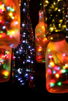 Wine bottles & Christmas lights.