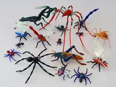 Collection of glass insects by Milon Townsend and Tim Jerman