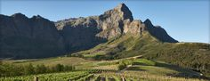 Welcome to the online home of Anthonij Rupert Wines, we invite you to not only browse our range of wines but shop online as well, come experience our wines. Farms, Wines, South Africa, Vineyard, Spaces, Adventure, Mountains, Travel, Homesteads