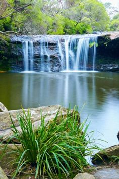 If you're looking for a comprehensive guide to swimming holes in NSW, then Wild Swimming Australia might be your new oracle. Check out these water holes. Beautiful Places To Visit, Cool Places To Visit, Places To Travel, Travel Oz, Australian Holidays, Australian Road Trip, Holiday Places, Swimming Holes, Weekends Away