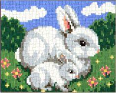 Bunny Hasen