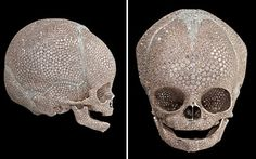 """Damien Hirst's 'For Heaven's Sake' (1998)   """"What's the maximum I could do as a celebration against death? When you look at a skull, you think it represents the end, but when you see the end so beautiful, it gives you hope. Diamonds are about perfection and clarity and wealth and sex and death and immortality. They are a symbol of everything that's eternal, but then they have a dark side as well."""""""