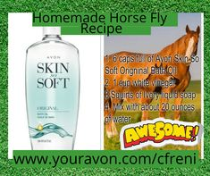 Here in the South, flies can be such a pain! Did you know that you make your own fly spray? Skin So Soft is a part of the recipe too! Skin So Soft: 🐴 🐎 #avonproducts #flies #equestrian #horses #horseflies #annoying #pests #beauty #homemade #follow #south #helpful #recipe #horselife #dryskin #horselove #horselover Fly Spray, Avon Skin So Soft, After Bath, Sales Representative, Liquid Soap, Horse Love, Sales And Marketing, Jojoba Oil, Dry Skin