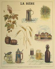 planche pédagogique  la bière