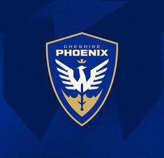 Logo Desing, Soccer Logo, Sports Logos, Crests, Pictogram, Web Design Inspiration, Logo Ideas, Brand Design, Logo Design Contest