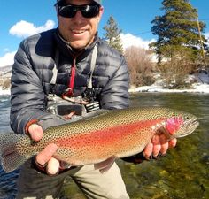 Fly Fishing Rainbow Picture by Eric Stollar Taken From Flydreamers.com . #FromFd #Flyfishing