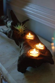 10 Easy and Creative Wooden Diy Project  Tea candles and tillandsia air plants in wood for a moody vibe