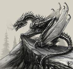 Dragon sketch by ShaneTyreeArt.deviantart.com on @DeviantArt