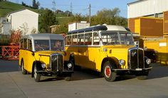 2 autocars Saurer Post Bus, School Buses, Busses, Old Trucks, Coaches, Campers, Hot Rods, Chevy, Restoration