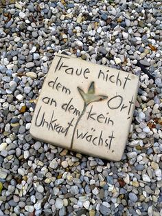 """Do not trust the place where no weed grows."" Ganz meine Meinung … » Gartenpraxis, Lebensraum Garten"