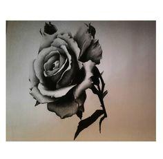 #myart #roses #blackwhite #black #white #work #mywork #ink #rosa #rose