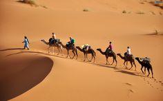 Desierto de Sahara.  Situado en el norte del continente africano, es la mayor llanura desértica del mundo con más de 9 millones de kilómetros cuadrados de superficie. Es también el más cálido y tiene 2 millones y medio de años. Está compuesto fundamentalmente de grava, arena y dunas.