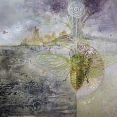 Cicada by puimun on DeviantArt