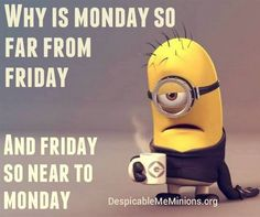 Cute Friday Minions Funny captions AM, Friday November PST - Humor Funny Monday Memes, Funny Minion Memes, Monday Humor, Funny True Quotes, Funny School Jokes, Crazy Funny Memes, Minions Quotes, Really Funny Memes, Funny Laugh
