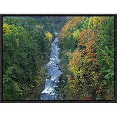 Global Gallery Ottauquechee River and Quechee Gorge, Vermont by Tim Fitzharris Framed Photographic Print on Canvas Size: